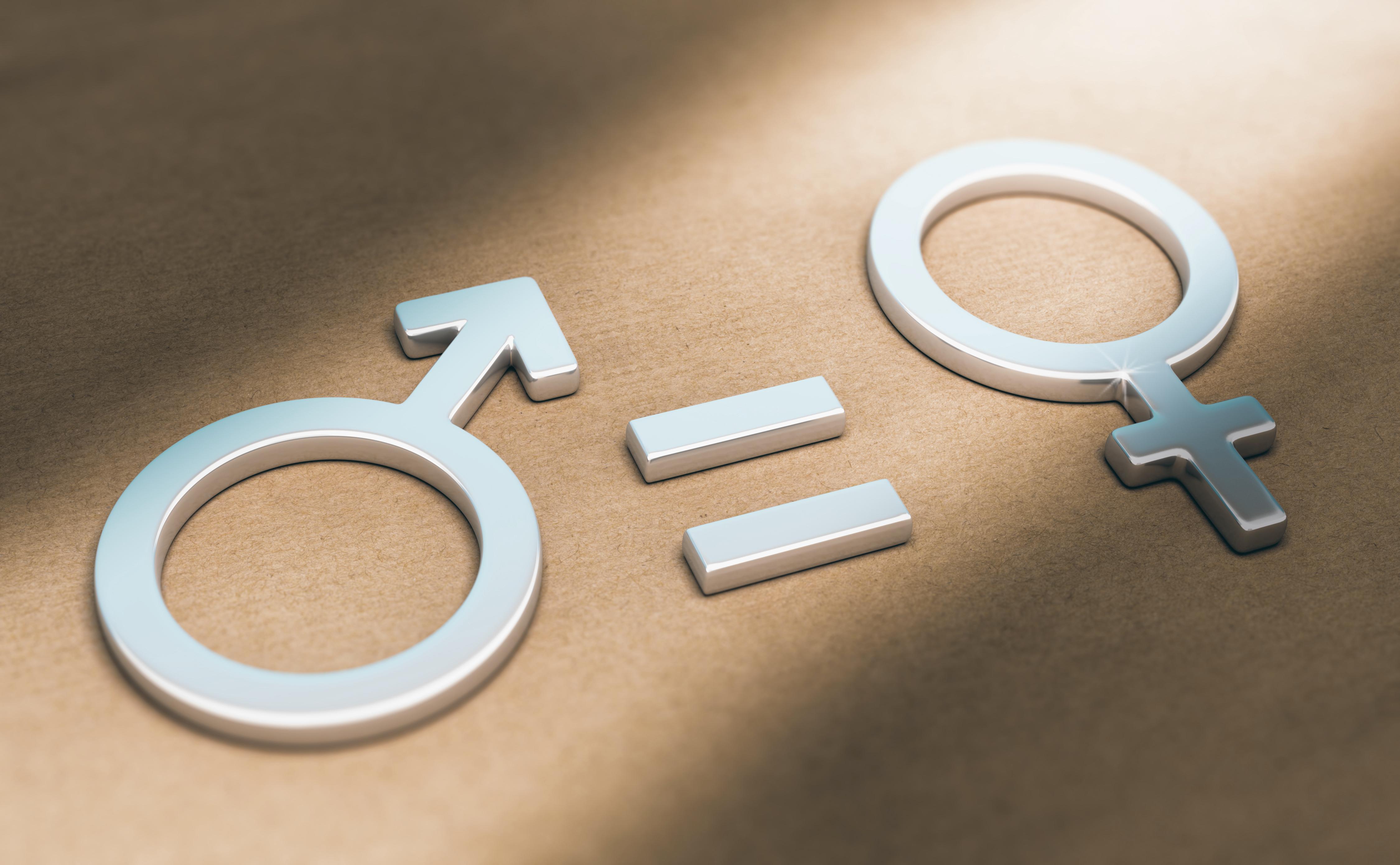 droits des femmes   u00e9galit u00e9   que dit la nouvelle loi
